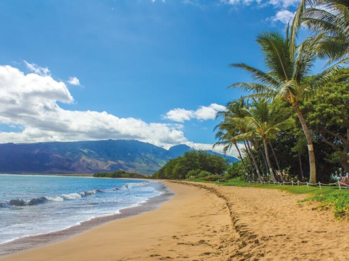 Things to do in Maui with toddlers on a Hawaiian vacation with kids.