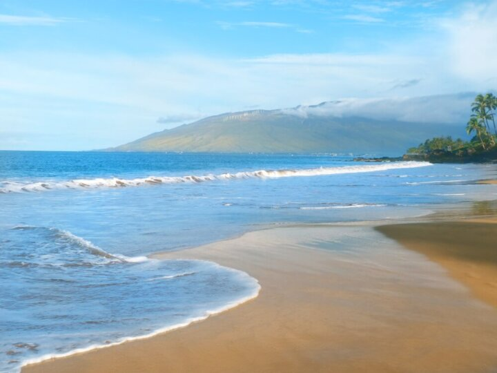 How to spend a week in Maui with toddlers.