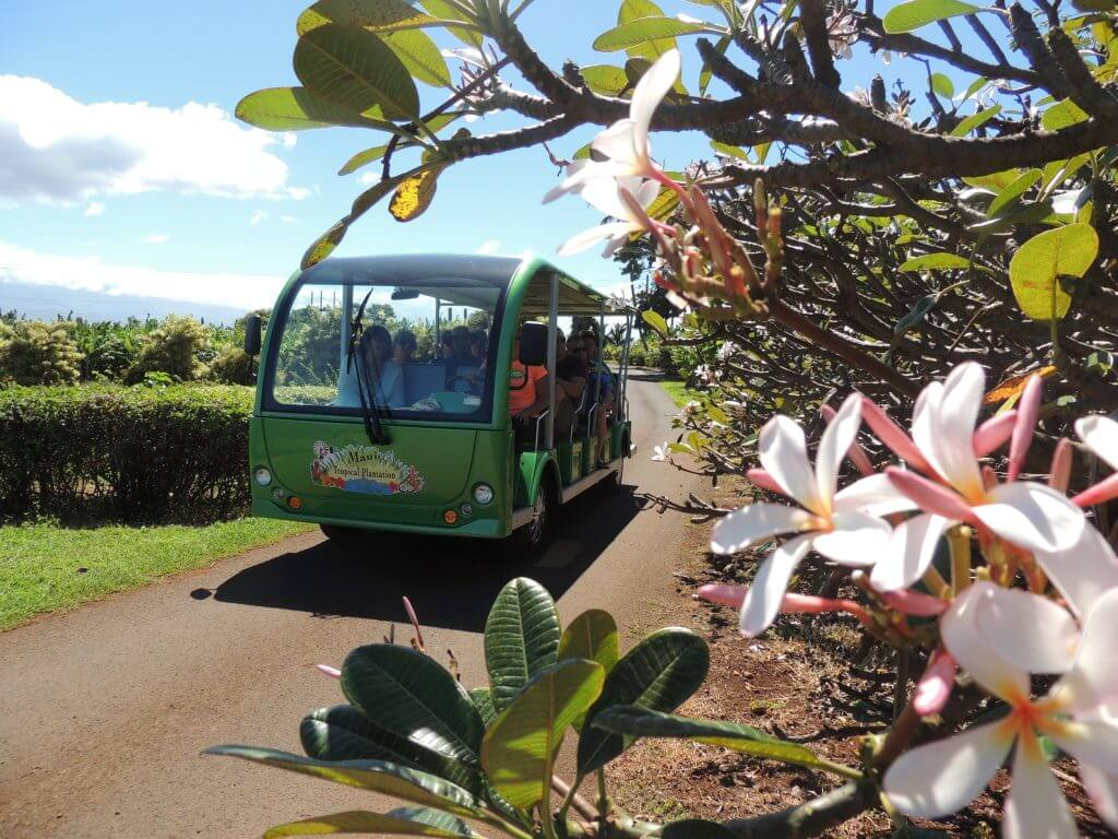 The tram ride at the Maui Tropical Plantations is a must do in Maui with toddlers.