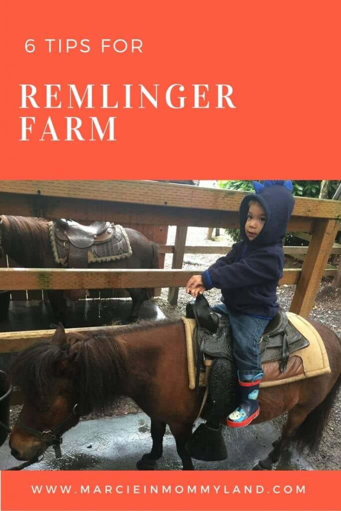 Remlinger Farm
