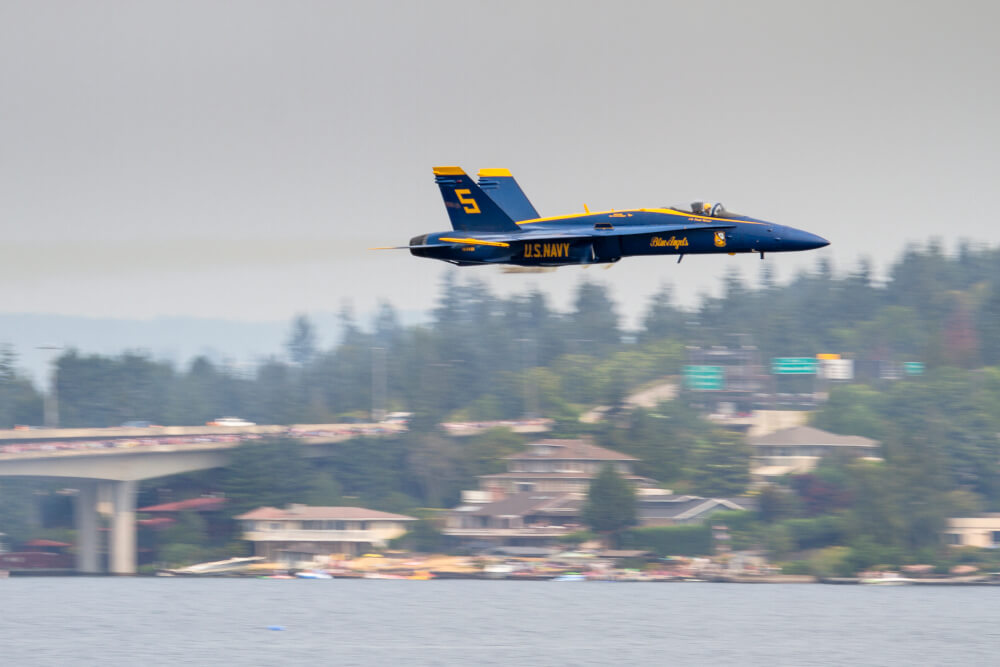 Pet Safety Tips for Seattle Blue Angels Show Weekend