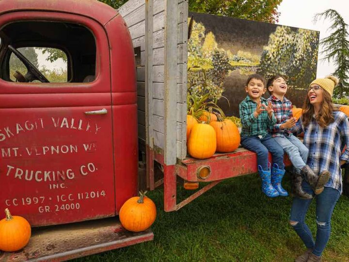 8 Tips for a Successful Pumpkin Patch Photo Shoot with Kids