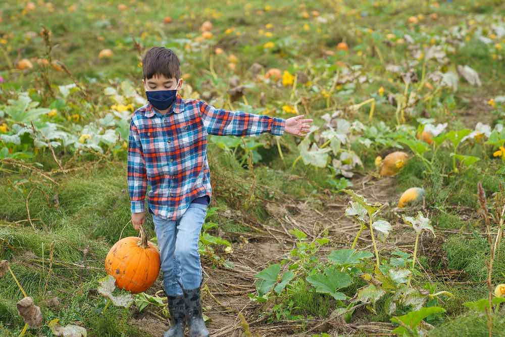 Don't forget your mask if you are heading to the pumpkin patch in 2020