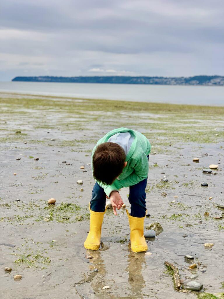 Searching the beach for cool rocks and sea creatures is a fun thing to do in Semiahmoo Resort & Spa. | Semiahmoo Resort and Spa review featured by top US travel blogger, Marcie in Mommyland