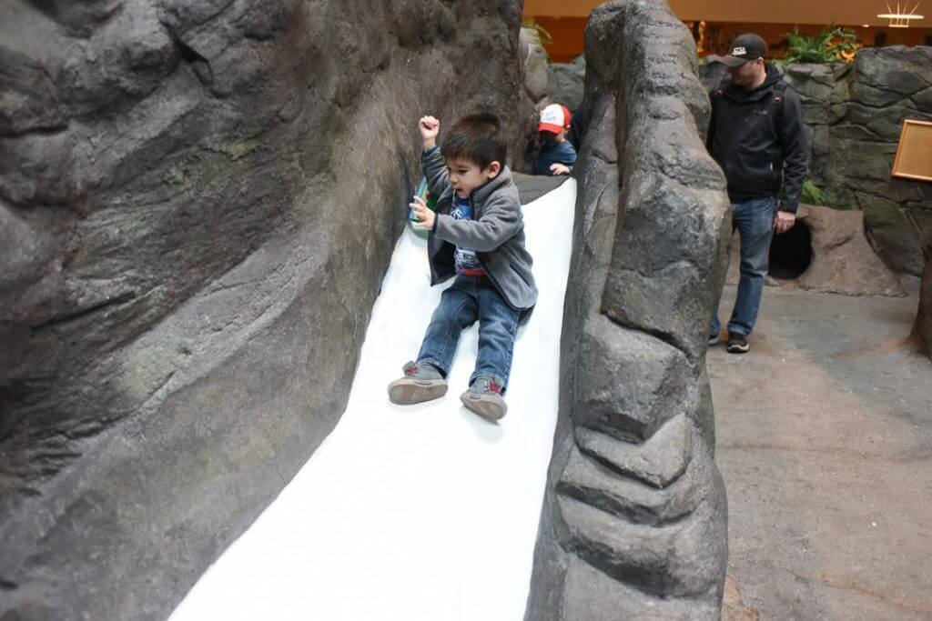My son enjoyed this slide because it wasn't too fast. Photo credit: Darren Cheung