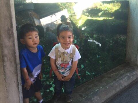 Seattle Aquarium Toddler Play Date
