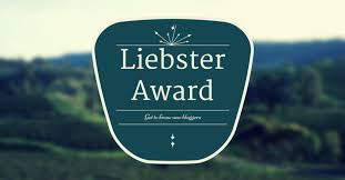 Marcie in Mommyland Receives the Liebster Award
