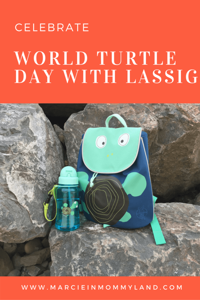 World Turtle Day with Lassig