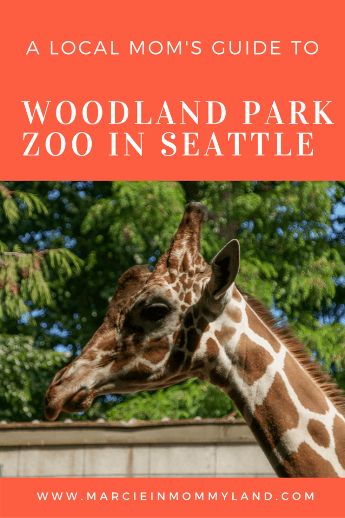 A Local Mom's Guide to Woodland Park Zoo in Seattle