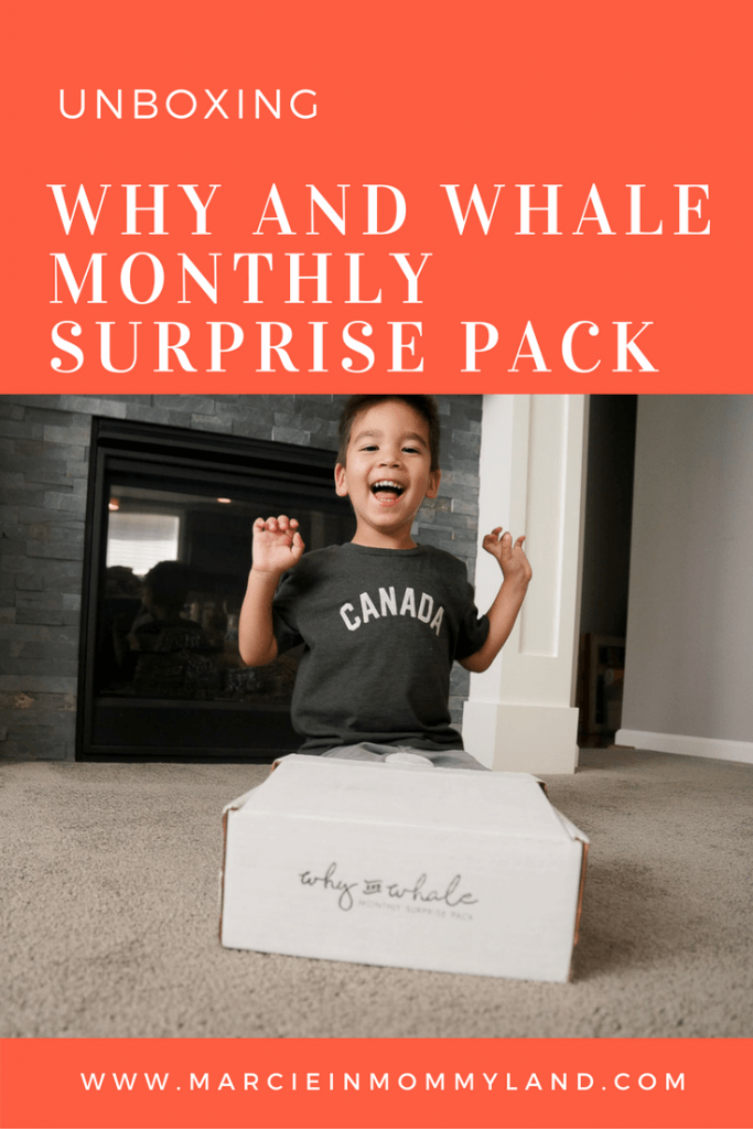 Why and Whale Monthly Surprise Pack Unboxing