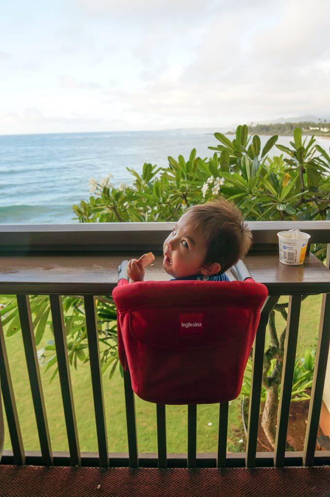 This Inglesina Travel High Chair is a packing essential for any family trip with a baby or toddler