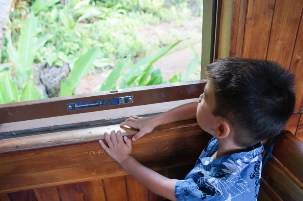 Kilohana Plantation Railway and Luau Kalamaku (one of the best luaus on Kauai) are fun things to do on Kauai with kids.