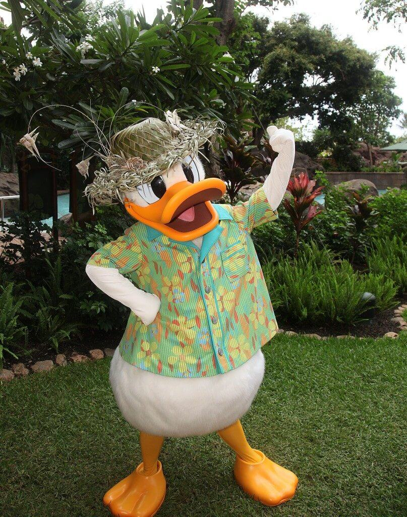 Disney Aulani resort tips featured by top US Disney blog, Marcie and the Mouse: Photo of Donald Duck at Disney Aulani Resort in Hawaii #aulani #donaldduck #hawaii