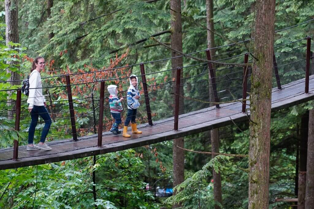 The Tree Walk is a unique thing to do in Vancouver, BC at you can find it at Capilano Suspension Bridge Park.