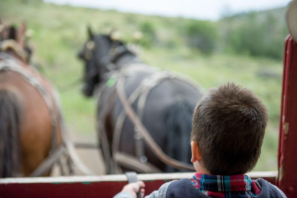 Photo of a boy steering a horse drawn wagon at Sun Mountain Lodge in Winthrop, WA #horses #wagon #coveredwagon #sunmountainlodge #winthropwa #pnw #pacificnorthwest #familytravel