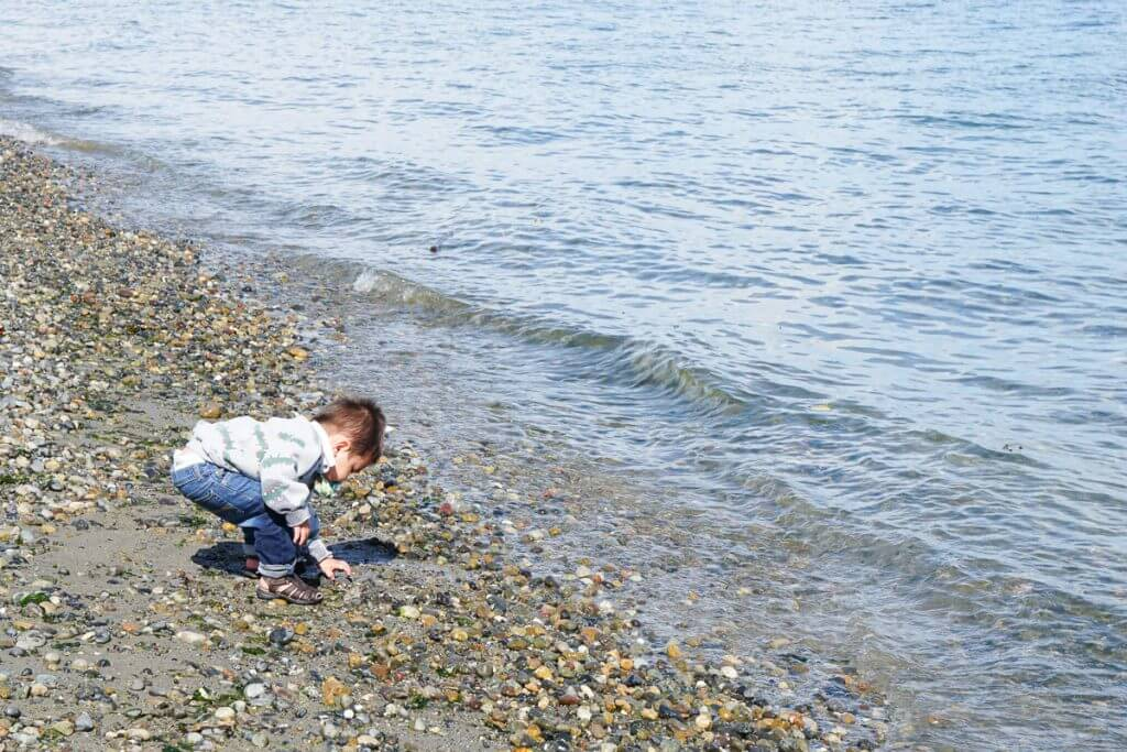 Photo of the rocky beach on Blake Island, just outside Seattle, WA #blakeisland #washingtonstate #pnw #pacificnorthwest #beach