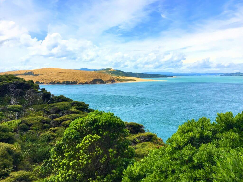 Photo of Northland, New Zealand, a fun babymoon destination for women traveling while pregnant #northland #newzealand #northlandnewzealand #babymoon #newzealandroadtrip #roadtrip