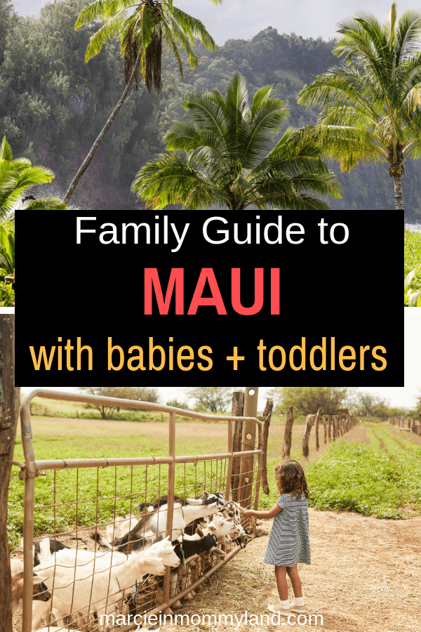 This family guide to Maui with babies and toddlers highlights kid-friendly Maui attractions like the Maui Ocean Center, Surfing Goat Dairy, the best kid-friendly beaches on Maui and more! Click to read more or pin to save for later. www.marcieinmommyland.com #maui #mauiwithkids #hawaii #surfinggoatdairy #mauitropicalplantation #visitmaui #familytravel #hawaiiwithkids #mauiwithababy #mauiwithtoddlers