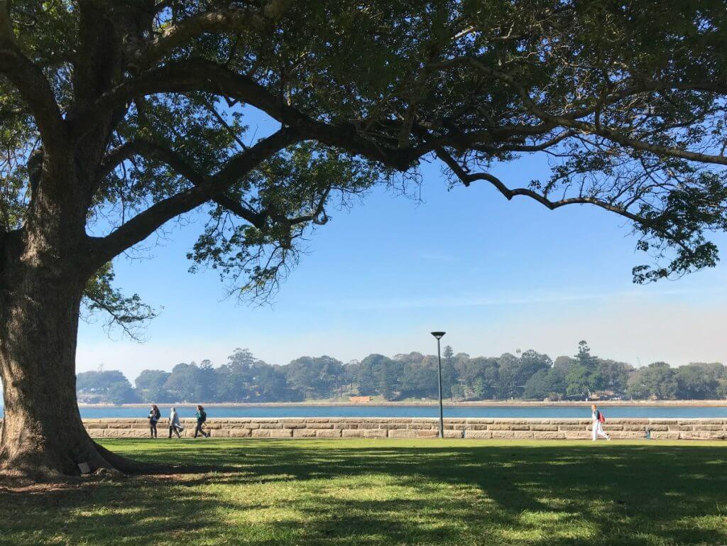 Photo of the Royal Botanic Gardens in Sydney, Australia #familytravel #australia #sydney #royalbotanicgardens