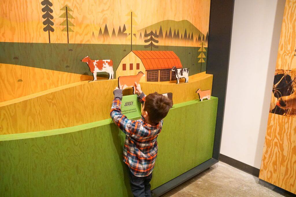 Photo of an interactive display at the Tillamook Creamery in Oregon #tillamook #oregon #pnw #oregoncoast #dairy