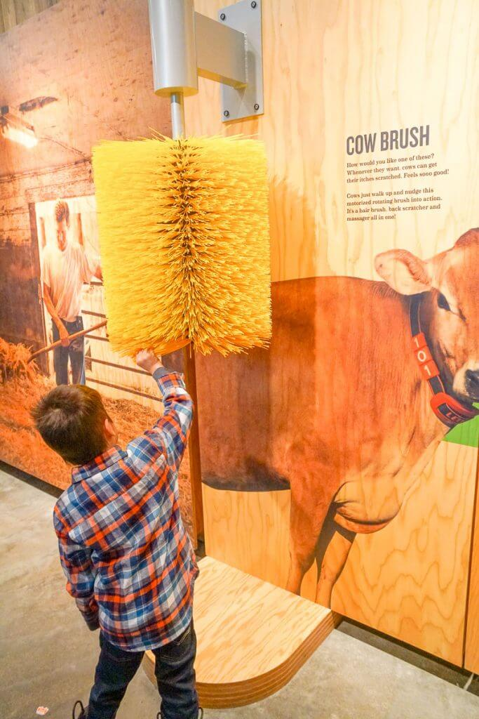 Photo of an interactive exhibit at the Tillamook Creamery in Tillamook, Oregon #tillamook #dairy #oregoncoast