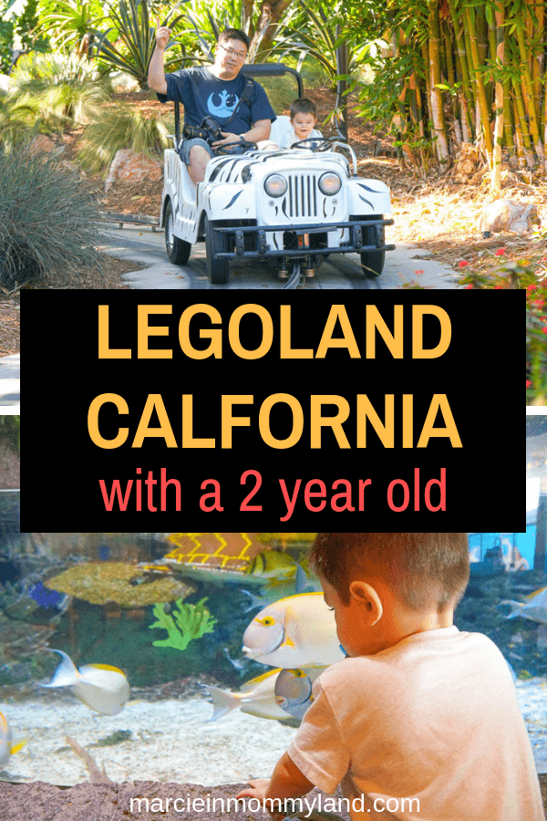 Read my complete guide to LEGOLAND California with a 2 year old, including where to stay and what to do. Click to read more or pin to save for later. www.marcieinmommyland.com #LEGOLANDCA #themepark #familytravel #LEGOLAND #visitsandiego