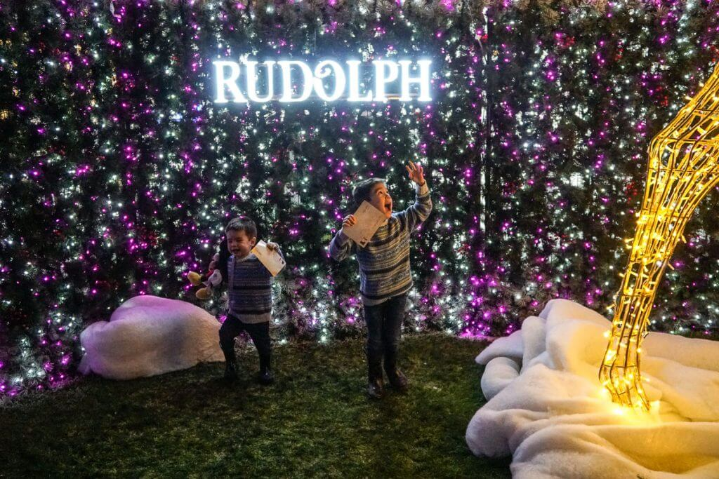 Photo of the world's largest light maze at Enchant Christmas in Seattle, WA #lightmaze #enchantseattle #enchantchristmas #rudolph