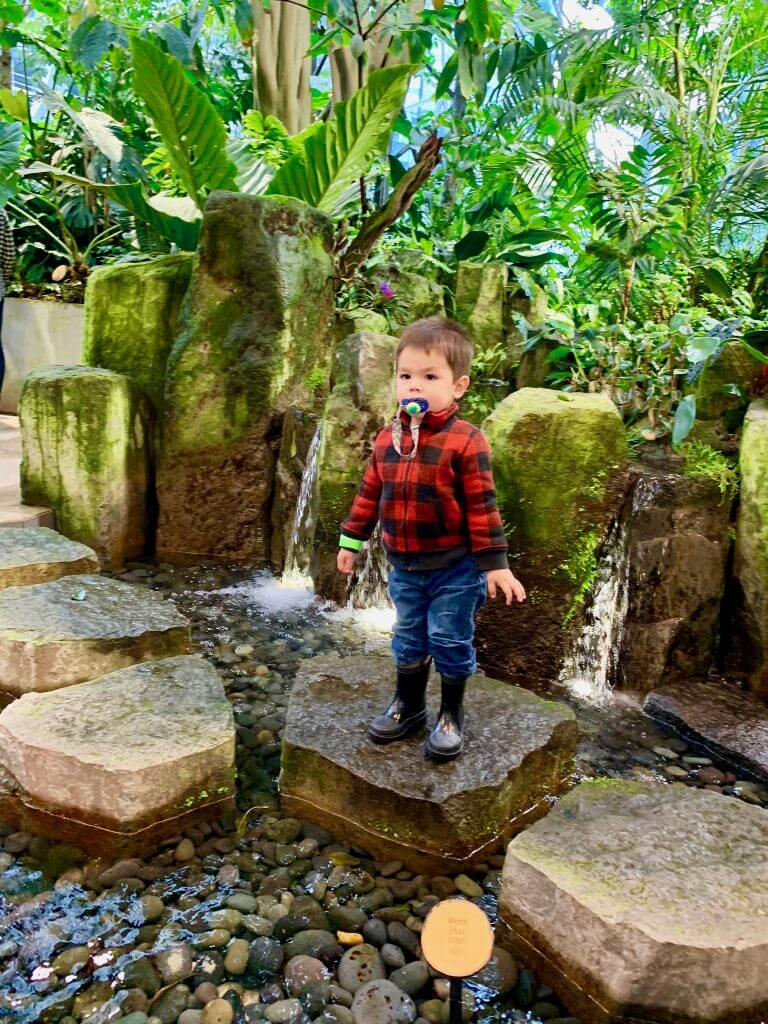 Photo of a toddler at the Seattle Amazon Spheres in South Lake Union #amazonspheres #biosphere #seattle