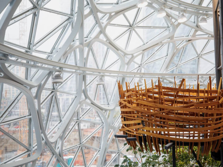 What It's Like to Tour the Seattle Amazon Spheres