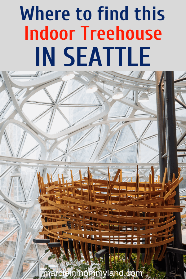 Looking for a unique indoor spot in Seattle for your next family adventure? Find out where to find this indoor treehouse in Downtown Seattle. Click to read more or pin to save for later. www.marcieinmommyland.com #visitseattle #pacificnorthwest #familytravel