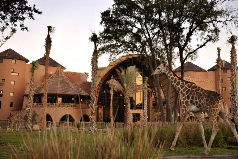 Kidani Village at Disney's Animal Kingdom Lodge at Walt Disney World in Orlando, Florida #kidanivillage #waltdisneyworld #disneyworld #animalkingdom