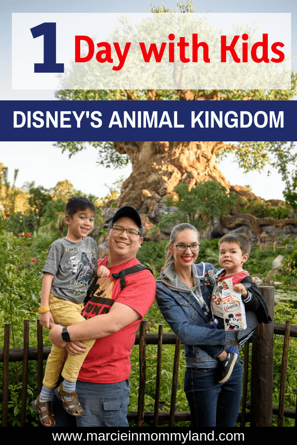 Are you planning a trip to Walt Disney World with kids? Find out how to spend one day at Disney's Animal Kingdom Park including toddler-friendly rides, best places to eat, and which shows to watch. Click to read more or pin to save for later. www.marcieinmommyland.com #waltdisneyworld #animalkingdom #wdw