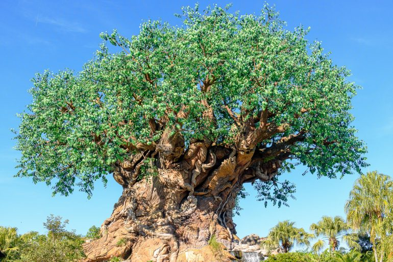 Are you planning a trip to Disney Animal Kingdom Park at Walt Disney World? Find out what to do in one day. #animalkingdom #waltdisneyworld #treeoflife | Disney Animal Kingdom Park with Kids tips featured by top Disney blogger, Marcie in Mommyland