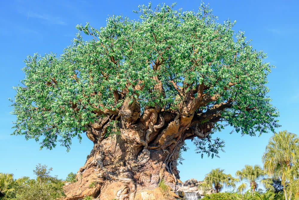 Disney Animal Kingdom Park With Kids Marcie In Mommyland