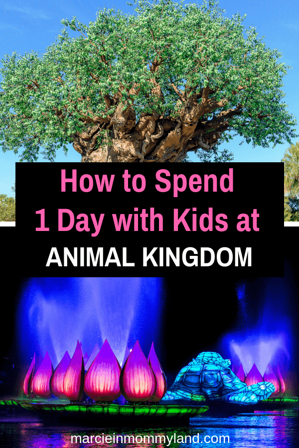 Are you bringing kids to Walt Disney World in Orlando, Florida? Find out exactly how to spend one day at Disney's Animal Kingdom with toddlers and preschoolers. Get my one day itinerary, plus tips for parents about where to eat, which shows to watch, and where to see animals. Click to read more or pin to save for later. www.marcieinmommyland.com #wdw #waltdisneyworld #animalkingdom #pandora #treeoflife