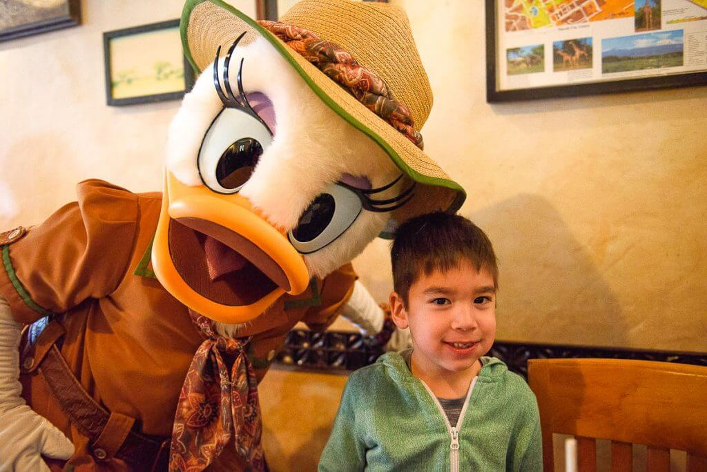 Safari Daisy greets my son during our Tusker House character breakfast at Walt Disney World's Animal Kingdom in the Harambe Village. #daisy #waltdisneyworld #disneyworld #tuskerhouse #daisyduck #characterbreakfast