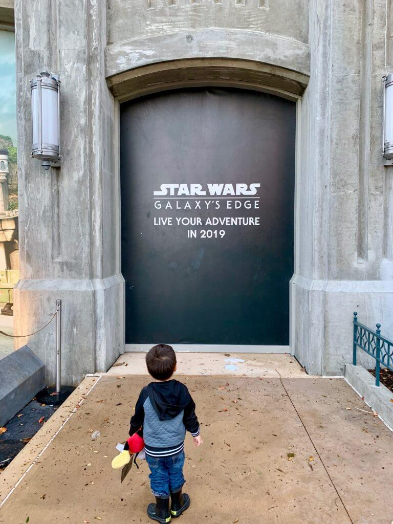 The newest attraction at Walt Disney World is Star Wars: Galaxy's Edge at Disney's Hollywood Studios.