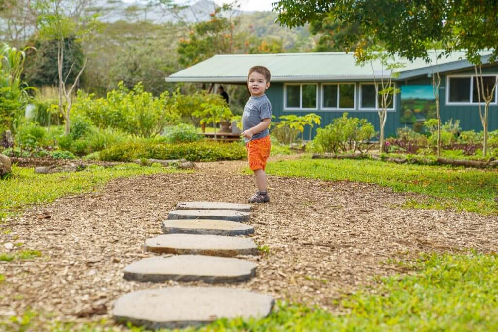Kauai Farmacy has impressive grounds with places for kids to explore and run around.