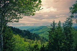 Explore the Great Smoky Mountains with RV Share |