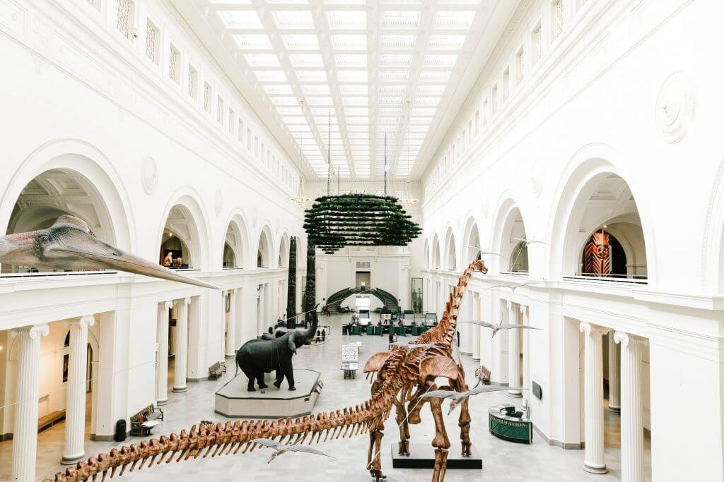 There are plenty of things for kids to look at (including dinosaurs) at Field Museum in Chicago.
