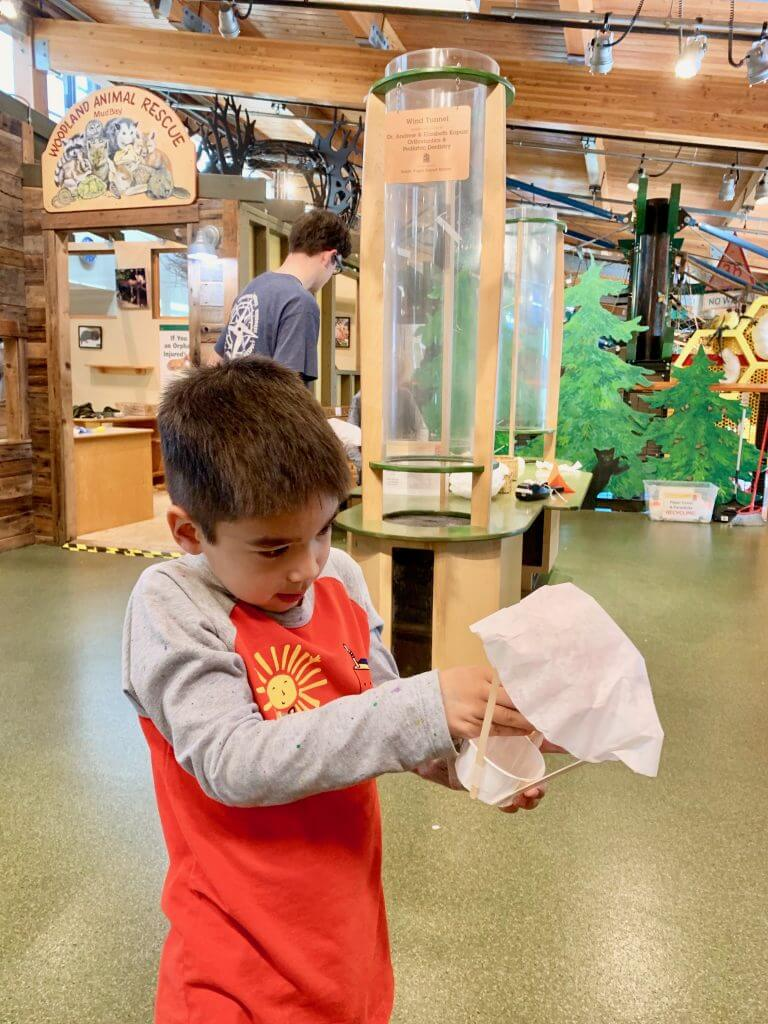 The Hands On Children's Museum is one of the best things to do with kids in Olympia, WA