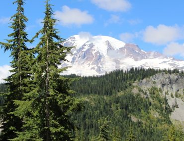 Heading to Mount Rainier with Kids? Find out the best kid-friendly things to do in Mount Rainier for your family.