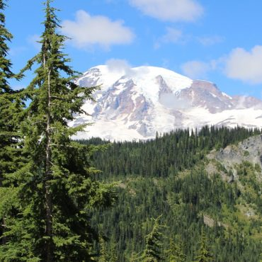 Top Things to do in Mount Rainier with Kids