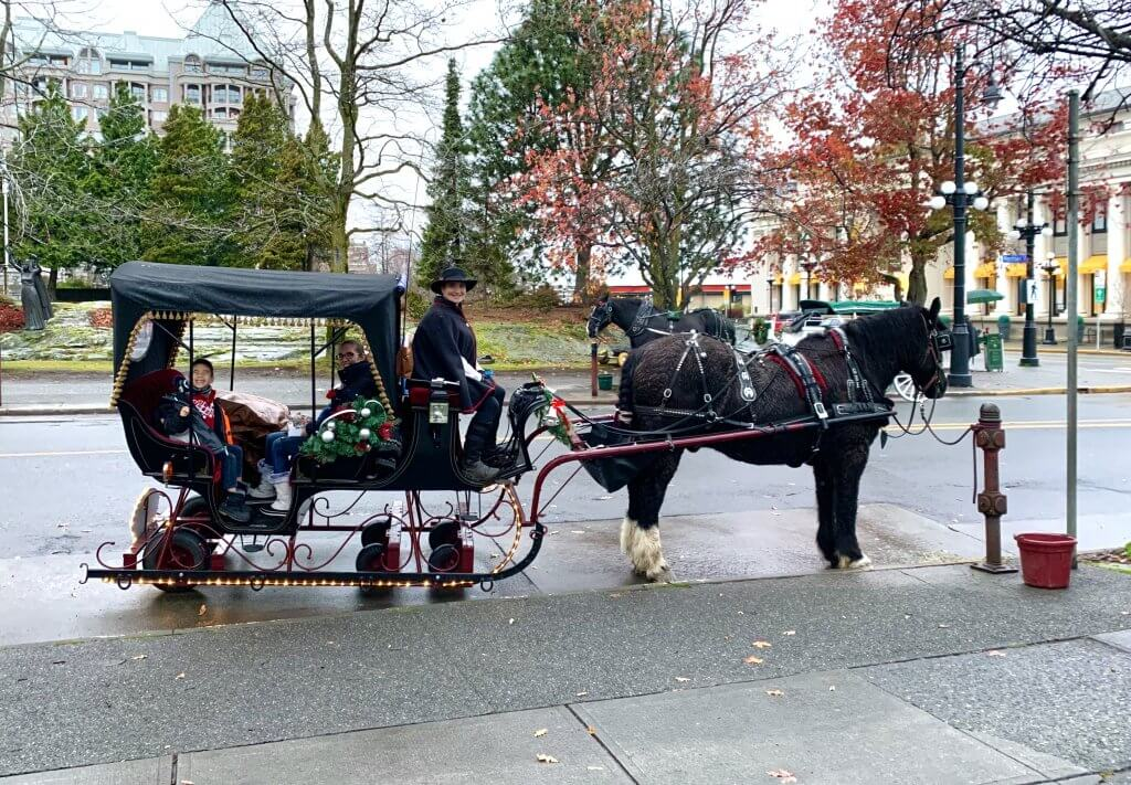 Christmas in Victoria BC: the Best Kid Friendly Festivities featured by top US family travel blogger, Marcie in Mommyland: Horse Drawn carriage with people inside and the carriage is meant to look like a sleigh