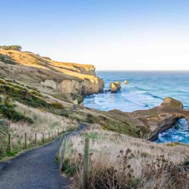 Dunedin, New Zealand Travel Guide: Things to do in Dunedin