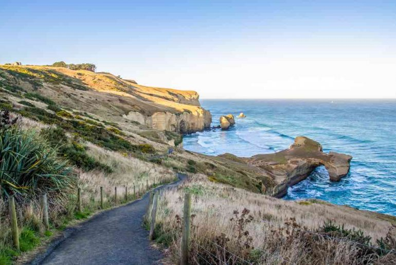 The Best Things to do in Dunedin New Zealand featured by top family travel blogger, Marcie in Mommyland