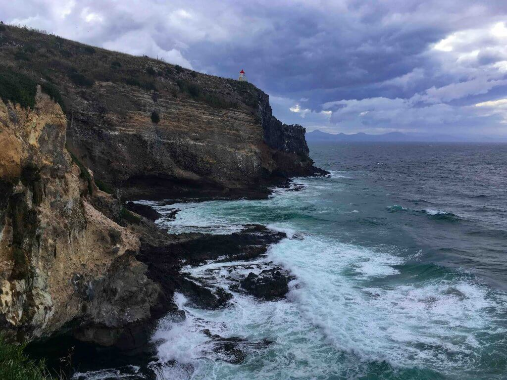 The Best Things to do in Dunedin New Zealand featured by top family travel blogger, Marcie in Mommyland: Albatross Centre in Dunedin New Zealand