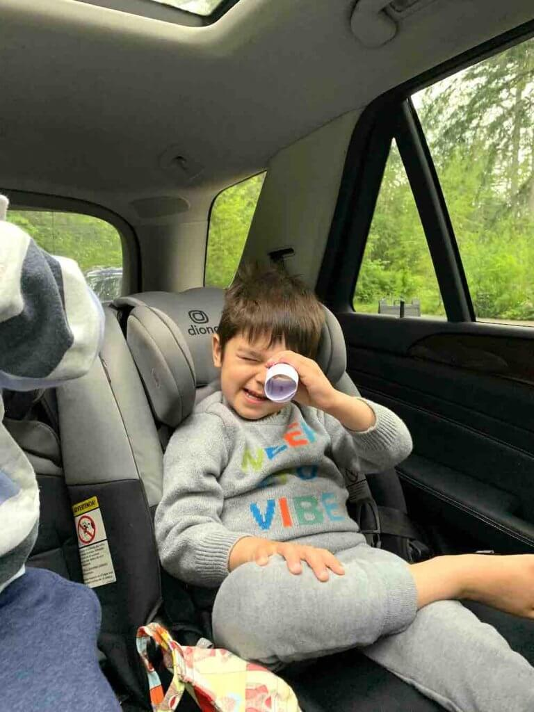 Northwest Trek Wildlife Park's Wild Drive Review featured by top Seattle blogger, Marcie in Mommyland: Northwest Trek Wild Drive in Washington State | northwest trek wildlife park reviews