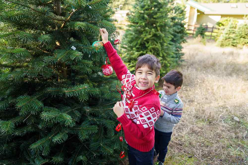 How to take your own DIY Christmas Family Portraits, tips featured by top Seattle lifestyle blogger, Marcie in Mommyland. Find out family Christmas picture outfit ideas. Image of two boys wearing Christmas sweaters.