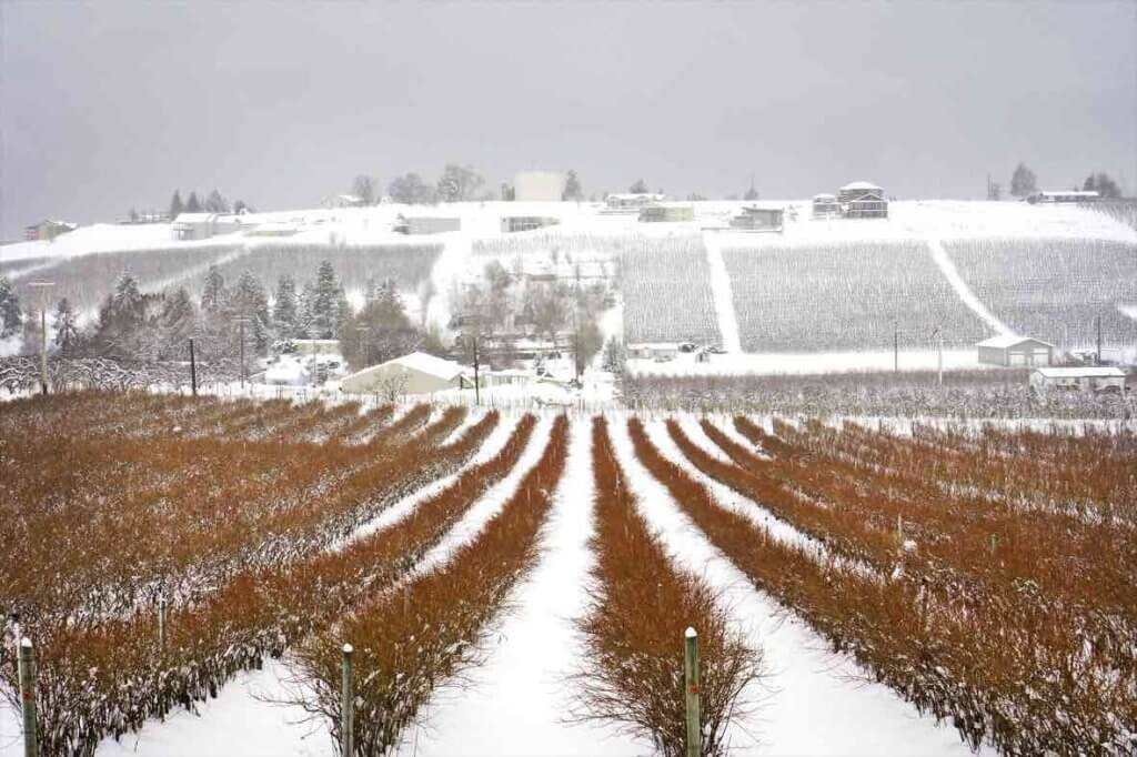 Best Winter Weekend Getaways from Seattle featured by top Seattle travel blogger, Marcie in Mommyland: Image of a farm in Lake Chelan in winter